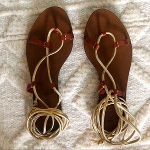 J. Crew Gladiator Sandals